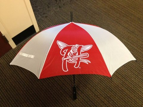 Mayfly umbrella